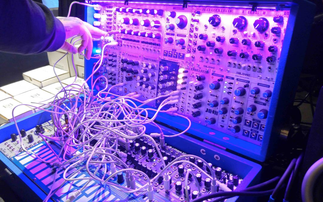 "Modular Synth ""Petting Zoo"""