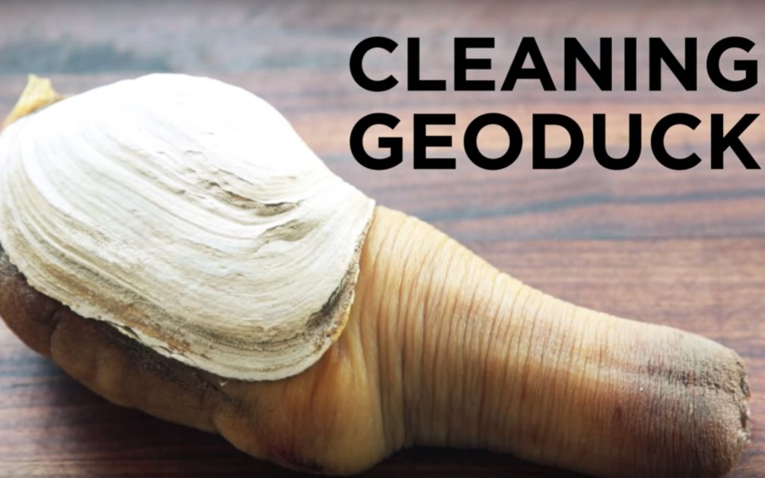 """""""Cleaning Geoduck"""" by ChefSteps"""