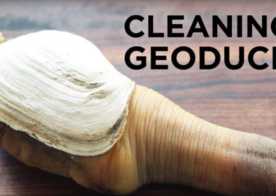 """Cleaning Geoduck"" by ChefSteps"